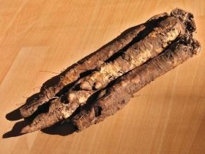 5 sad tipů na využití černého kořene v  kuchyni